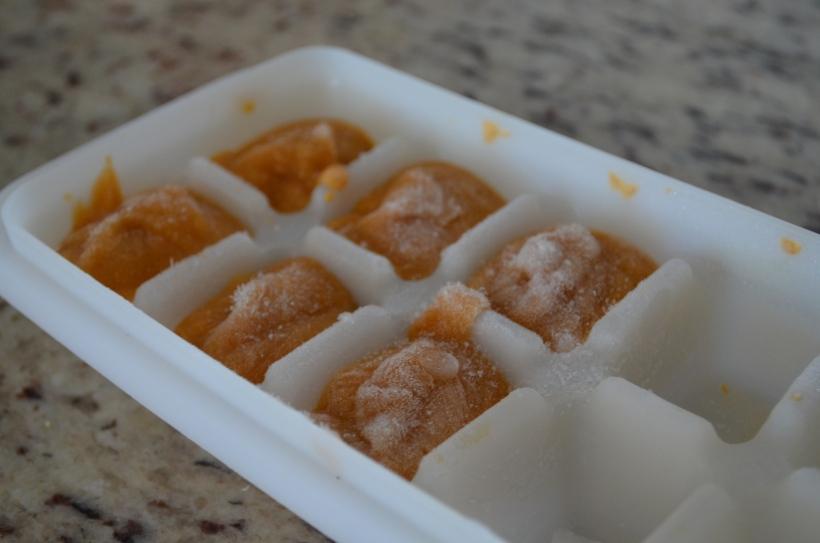 Baby Food Cube Tray