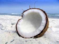 The Benefits of Coconut Oil (1/2)