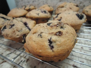 Very Blueberry Muffins